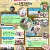 犬の運動会&マルシェ