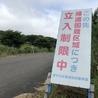 福島県飯舘村、家屋解体により緊急保護「とら吉くん」 サムネイル7