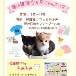 緊急譲渡会&保護猫カフェ