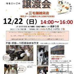 第7回保護ねこ譲渡会at三毛猫雑貨店