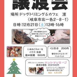 にゃんにゃん譲渡会&クリスマス会