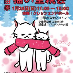 【小田原】猫の譲渡会