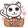 保護猫カフェさくら