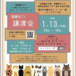 藤井寺保護猫サロンネコトクラッセ譲渡会