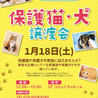 保護猫・犬譲渡会inララガーデン春日部