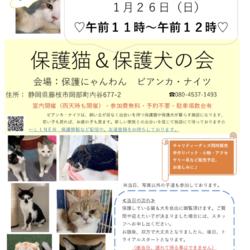 保護猫&保護犬の会