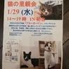 ★水曜に渋谷区初台で猫の里親会★