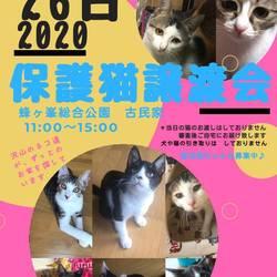第6回 保護犬猫譲渡会  IN山口県