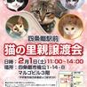 第1回 四條畷駅前 猫の譲渡会
