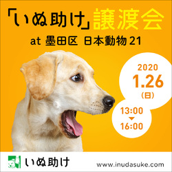 いぬ助け譲渡会at墨田区 日本動物21