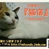 猫宿~nekoyado ~ (保護活動者)