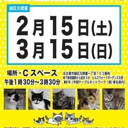 猫の譲渡会 緑区徳重 中部ケーブルネットワーク東名局