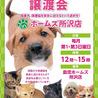 2/2(日)島忠ホームズ所沢店譲渡会!