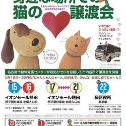 名古屋市熱田区 イオン熱田 猫の譲渡会 サムネイル1