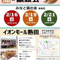 名古屋市熱田区 イオン熱田 猫の譲渡会 サムネイル2