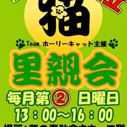 3/8 中止のお知らせです。猫の里親会 in 日立市 茨城