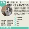【野崎参道商店街】大東まちゼミ譲渡会①
