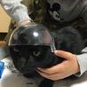 バズ・ライトイヤーのヘルメットで遊ばれて怒顔しゅうちゃん