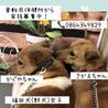 倉敷の福田犬、大ピンチ!