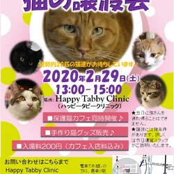 Happy Tabby Clinic猫の譲渡会