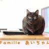 黒猫 あいちゃん 里親様募集♡ サムネイル2