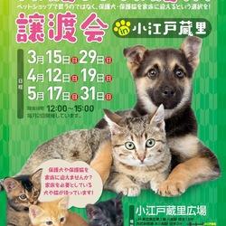 保護犬・保護猫譲渡会中止
