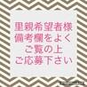 センター収容中 懐っこい茶キジ☆ナスキー サムネイル6
