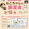 【3/15浅草橋】いつでもべったり♡カガミちゃん サムネイル5