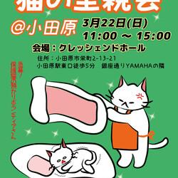 【小田原】保護猫の里親会