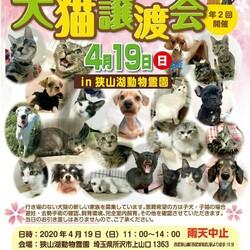 犬猫譲渡会狭 in 狭山湖動物霊園(HAS主催)