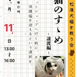 【開催中止】猫のすゝめ ~譲渡編