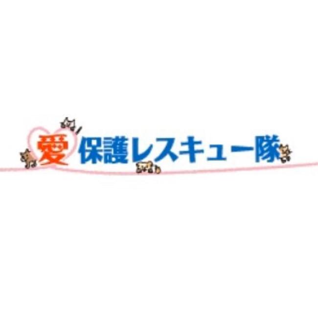 愛保護レスキュー隊のカバー写真