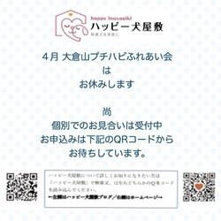 ※開催中止※大倉山プチハピふれあい会