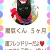 【一時募集停止】黒豆くん♡ サムネイル6