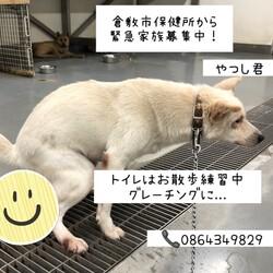 「倉敷のおとーちゃん、やつしをヨロシク!→卒業!」サムネイル2