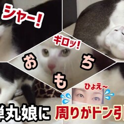 「【子猫おもち】強烈な白い弾丸娘」サムネイル1