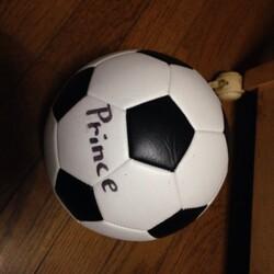 プリンスの大好きなサッカーボールを買いました、