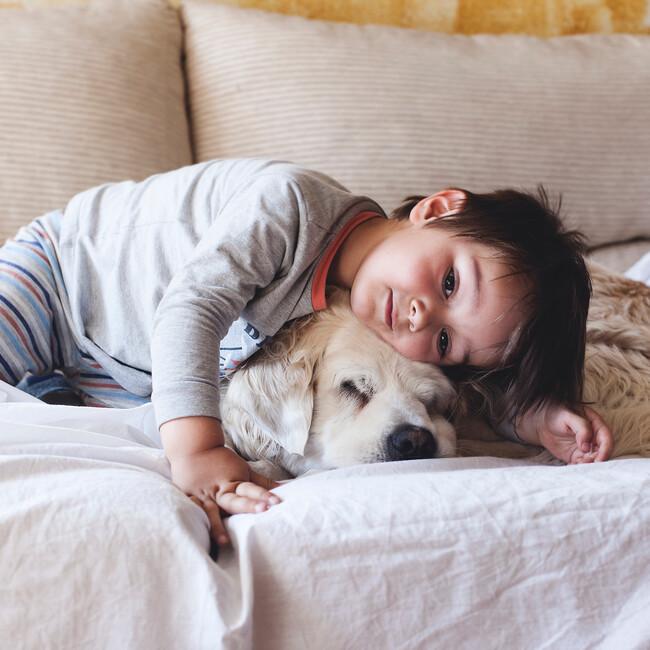 一般社団法人 犬猫ソーシャル・ネットワーク のカバー写真