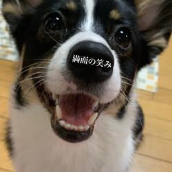 この笑顔...100点満点!