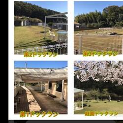 ホワイトガーデン(岡山) サムネイル2