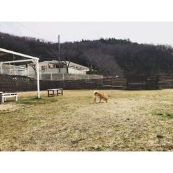 ホワイトガーデン(岡山) サムネイル3