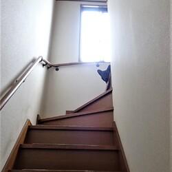 階段ツンデレ
