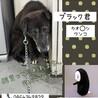ビビリなカオ〇ナシ・ブラック君→相談中! サムネイル2