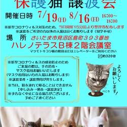 7/19(日) ハレノテラス保護猫譲渡会