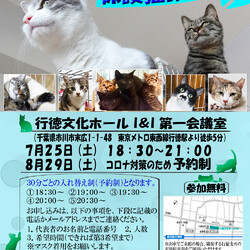 7/25(土)夜 予約制【イコール保護猫譲渡会】