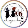 Leys.a.dog