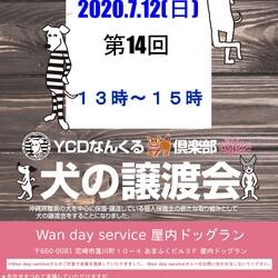Ycdなんくる倶楽部 いのちのバトンわたす犬の譲渡会(第14回)in尼崎