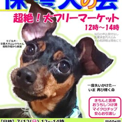 GO!保護犬GO☆保護犬の会(室内会場)in富士小山(富士霊園・富士スピードウェイ近く)