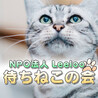 NPO法人Leeloo 待...(保護活動者)
