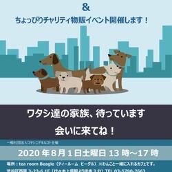 保護犬猫プチ譲渡会 & ちょっぴりチャリティー物販イベント開催!